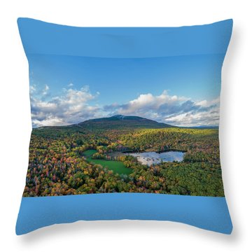 Throw Pillow featuring the photograph Home Of My Youth  by Michael Hughes