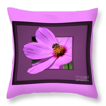 Honey Bee On Pink Throw Pillow