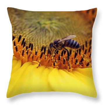 Throw Pillow featuring the photograph Honey by Candice Trimble
