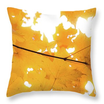 Honey Colored Happiness Throw Pillow
