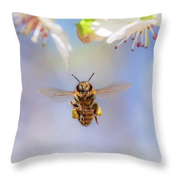 Honeybee Suspended On Air Throw Pillow