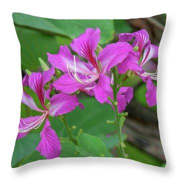 Throw Pillow featuring the photograph Hong Kong Orchid Tree Dthn0262 by Gerry Gantt