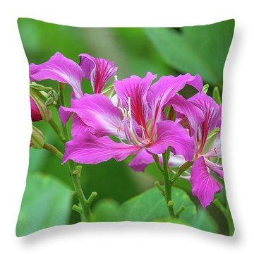 Throw Pillow featuring the photograph Hong Kong Orchid Tree Dthn0263 by Gerry Gantt