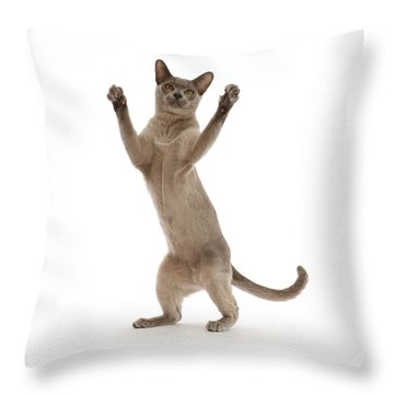 Throw Pillow featuring the photograph Hooray For The Weekend by Warren Photographic