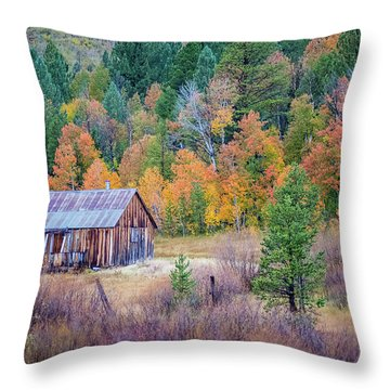 Hope Valley Cabin Throw Pillow