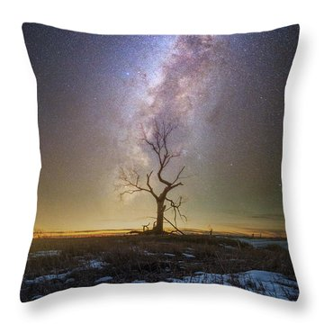 Throw Pillow featuring the photograph Hopeless He Stays  by Aaron J Groen