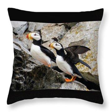Horned Puffin Pair Throw Pillow