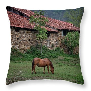 Horse In The Field Next To A Rural House Throw Pillow