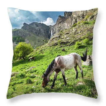 Horse On Balkan Mountain Throw Pillow