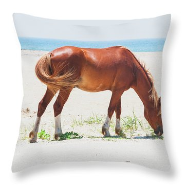 Horse On Beach Throw Pillow