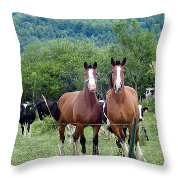 Horses And Cows.  Throw Pillow