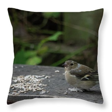 Throw Pillow featuring the photograph House Sparrow Next To Seed On Bench by Scott Lyons