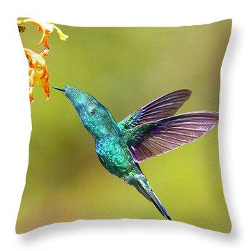Humhum Bird Throw Pillow