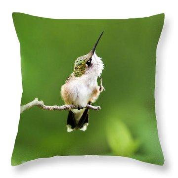 Hummingbird Flexibility Throw Pillow