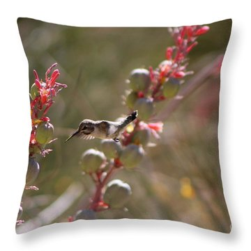 Hummingbird Flying To Red Yucca 1 In 3 Throw Pillow