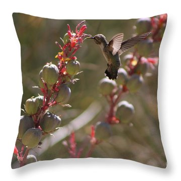 Hummingbird Flying To Red Yucca 3 In 3 Throw Pillow
