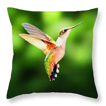 Hummingbird Hovering Throw Pillow