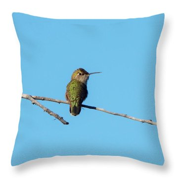 Throw Pillow featuring the photograph Hummingbird by Lukas Miller