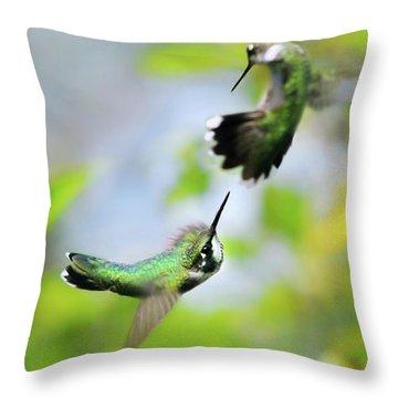 Hummingbirds Ensuing Battle Throw Pillow