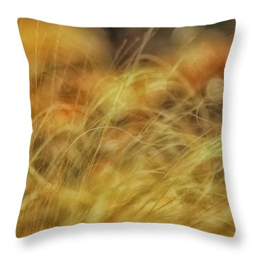 Humor Of Acquiescence Throw Pillow
