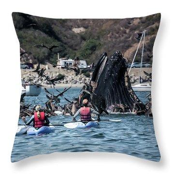 Humpbacks In Avila Harbor Throw Pillow