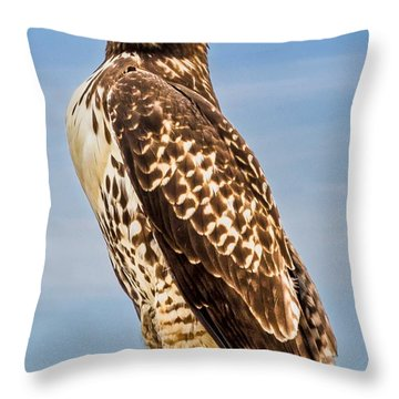 I Am Watching You Throw Pillow