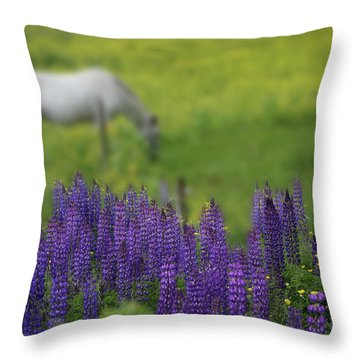 Throw Pillow featuring the photograph I Dreamed A Horse Among Lupine by Wayne King