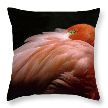 Throw Pillow featuring the photograph I See You by Howard Bagley