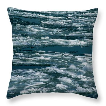 Ice Cold With Filter Throw Pillow