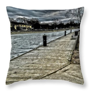 Iced Canal Throw Pillow