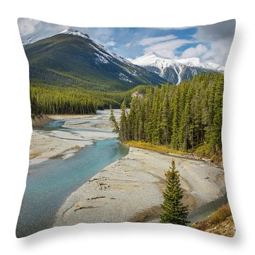 Icefields Parkway Delta Throw Pillow