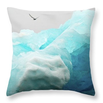 Iceland Iceberg Throw Pillow