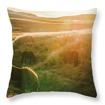 Icelandic Landscapes, Sunset In A Meadow With Horses Grazing  Ba Throw Pillow