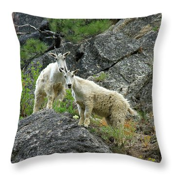 Idaho Mountain Goats Throw Pillow
