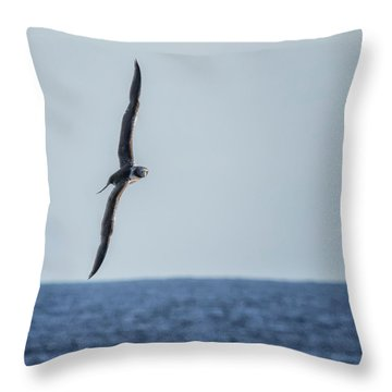 Throw Pillow featuring the photograph Immature Masked Booby, No. 5 Sq by Belinda Greb