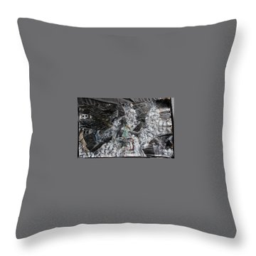 Immersed And Flawed By Cash Flow Throw Pillow