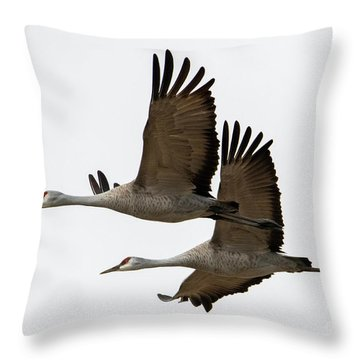 In Synch Throw Pillow