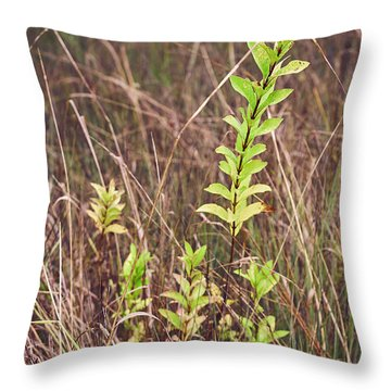 Throw Pillow featuring the photograph In Tall Grass by Whitney Goodey