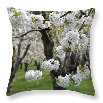 In The Cherry Orchard Throw Pillow