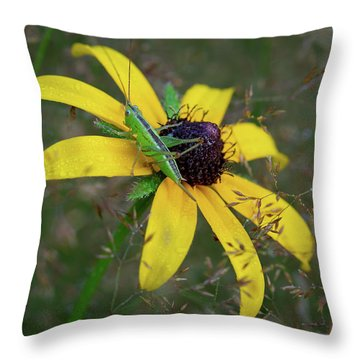 Throw Pillow featuring the photograph In The Meadow by Dale Kincaid
