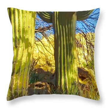 In The Shadow Of Saguaros Throw Pillow