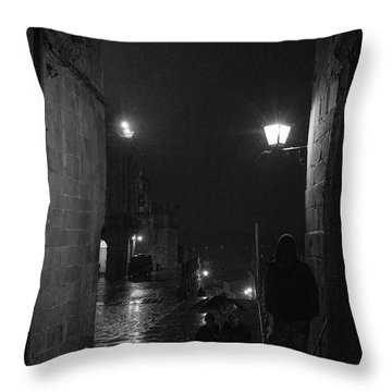 Throw Pillow featuring the photograph In Wait by Alex Lapidus