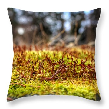 Inchoate Throw Pillow