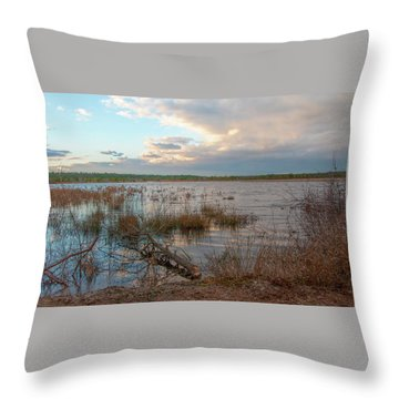 Throw Pillow featuring the photograph Incoming In The New Jersey Pine Barrens by Kristia Adams