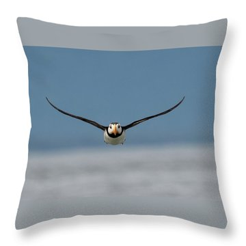Incoming Puffin Throw Pillow