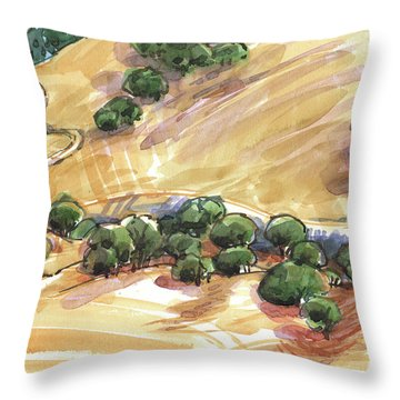 Indian Creek Valley From Shell Ridge Throw Pillow