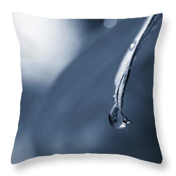 Throw Pillow featuring the photograph Indigo by Michelle Wermuth