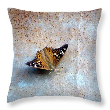 Industrious Butterfly Throw Pillow