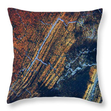 Ingrained Throw Pillow