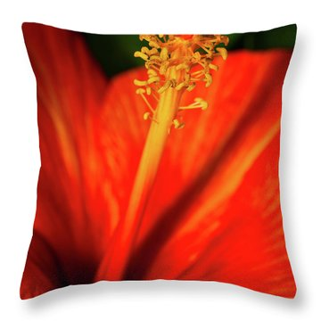 Throw Pillow featuring the photograph Into A Flower by Dheeraj Mutha
